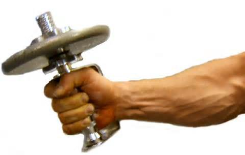 Blog Top Muscles Used During Climbing Strengthen Them